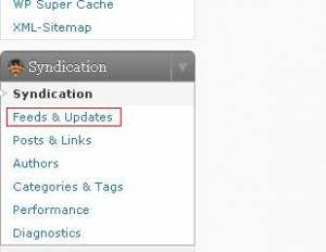 FeedWordPress Syndication